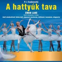 Orosz Nemzeti Balett: A hattyúk tava 2019 -Budapest BOK Csarnok