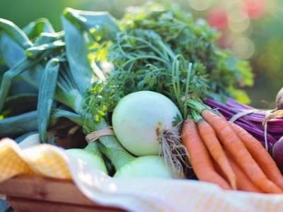 Növényvédőszerek: vigyázzon, hamisítják!