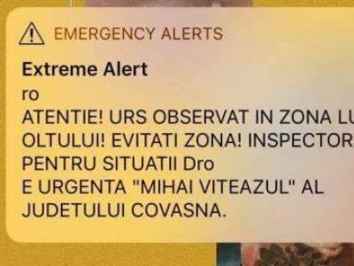 Medveveszély miatt riasztottak Erdélyben